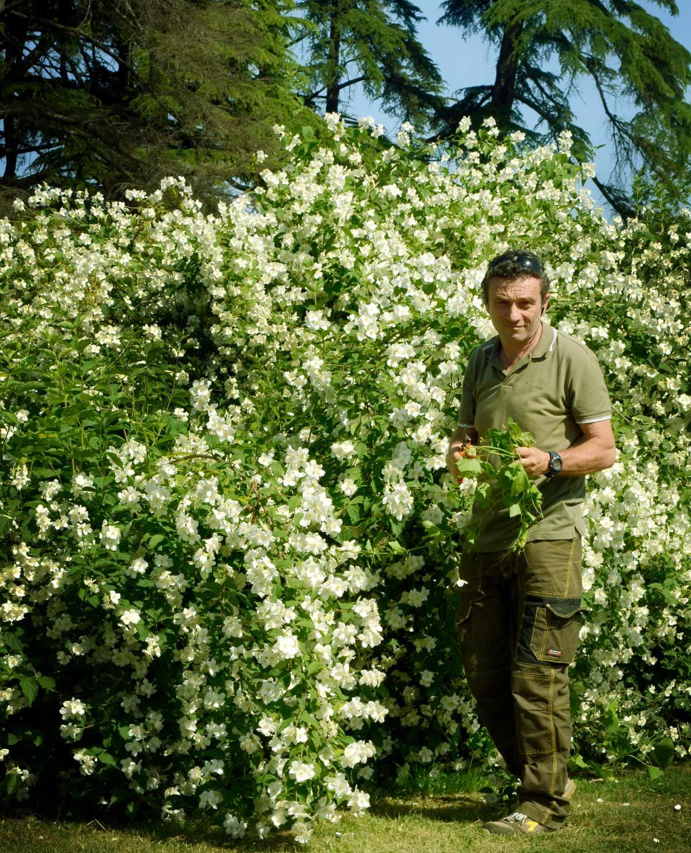 Alessandro Barberini nel giardino della Villa dei Capolavori